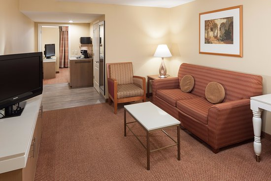 Hilton Garden Inn McAllen Airport: Suite Living Room