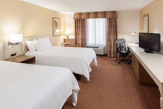 Hilton Garden Inn McAllen Airport: Two Double Bed Room