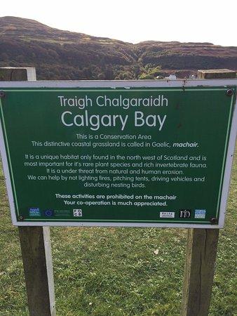 Isle of Mull, UK: Calgary Bay