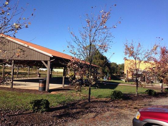 Louisa, VA: Outside area for picnic or whatever