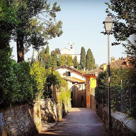 Ristorantino tra filari di vite ai piedi del Borgo di Montevecchia ...