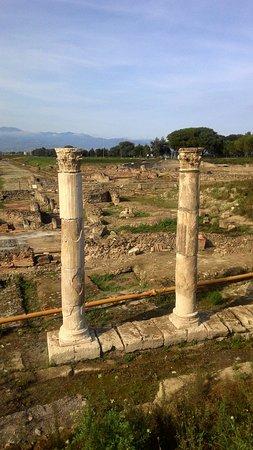 National Archeological Museum of Sibaritide: P_20161024_144713_large.jpg