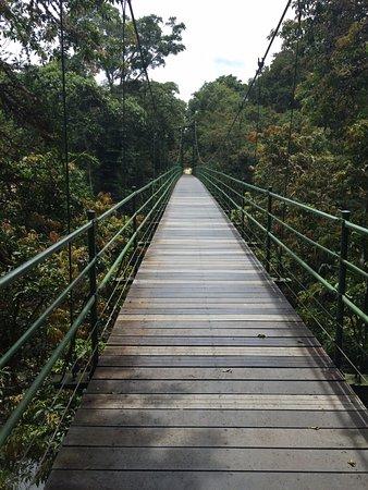 Sarapiqui, Costa Rica: Puente