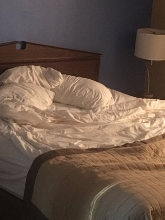 Florence, AL: Very thin sheets and cover. The brown thing at the bottom is decoration only.