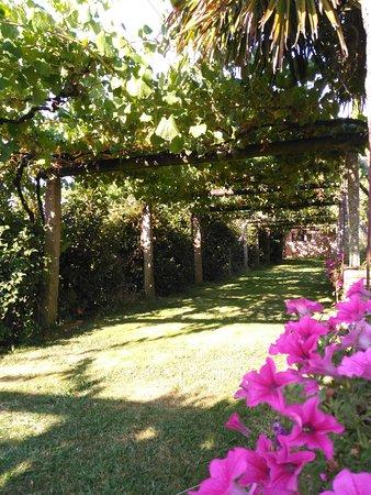 Vedra, Spanyol: Bellísimo jardín de Pazo de Galegos