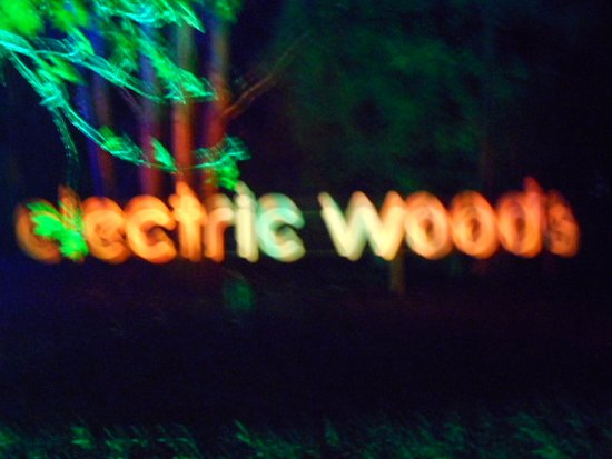 Robin Hill Country Park: electric woods