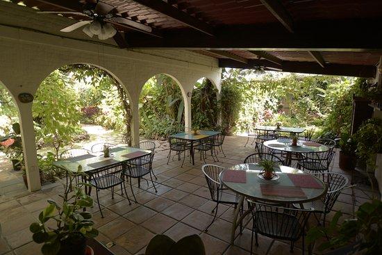 Arbol de Fuego Eco-Hotel Bild