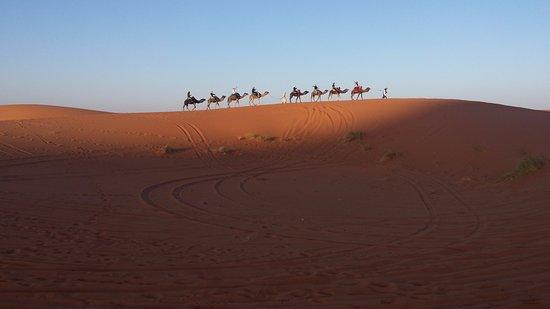 Morocco Trip Adventure: Camel trek