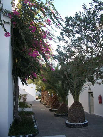 Foto de Mediterranean Beach Resort