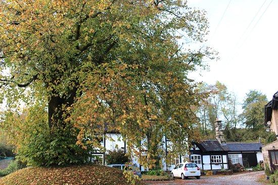 Bell Busk, UK: Tudor House in autumn