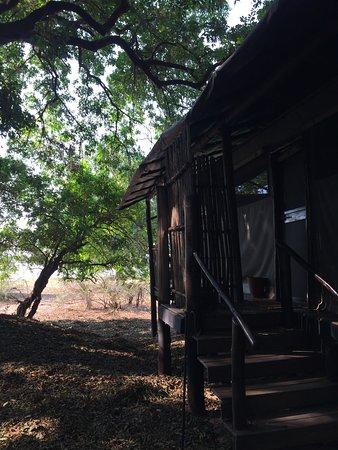 Lower Zambezi National Park, Zambia: photo3.jpg