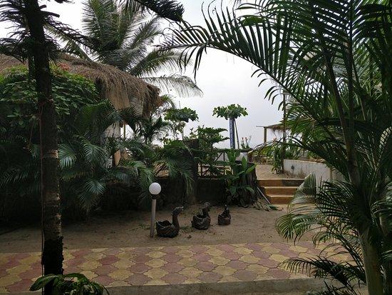 Ashvem Beach, Ινδία: View from my room