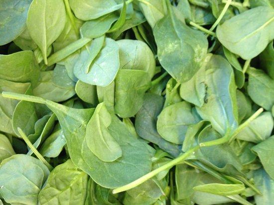 Leaf grocery