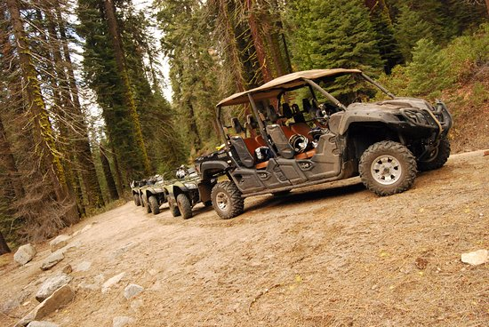 Fish Camp, Californie : The fleet of ATVs from Sierra Jeep Tours.