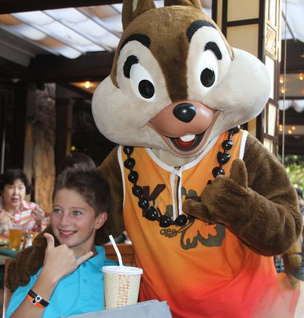 Aulani, a Disney Resort & Spa: Visits from Disney characters. This is Chip of Chip and Dale