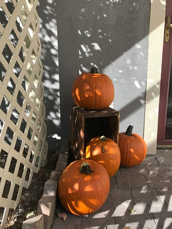 Ypsilanti, Μίσιγκαν: Back door pumpkins greetingguests.