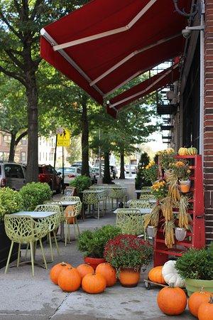 Astoria, NY: Fall Season