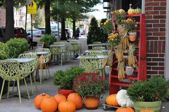 Astoria, NY: Cafe Fall Season
