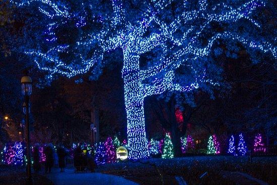 Missouri Botanical Garden: Garden Glow