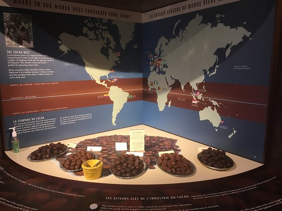 Chocolate Museum: photo1.jpg