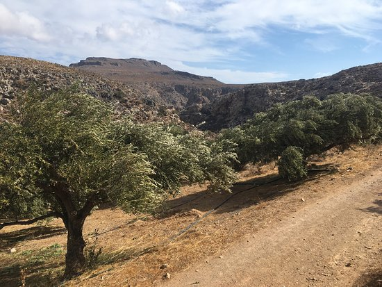 photo9.jpg - Picture of Gorge of the Dead, Kato Zakros ...