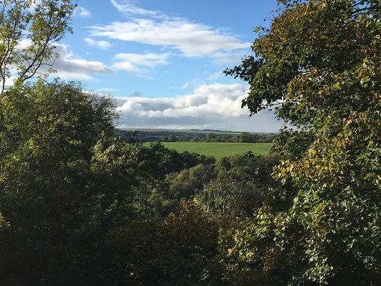 Helmsley, UK: View from terrace