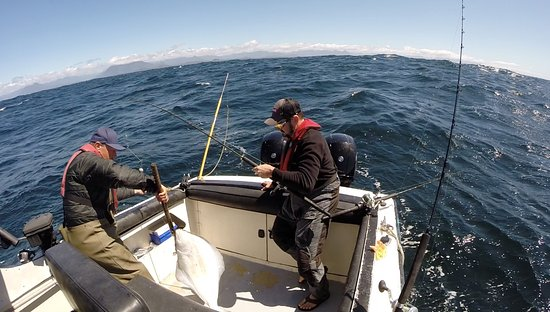 Ospray Fishing Charters: Halibut fishing with Shawn