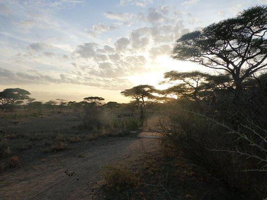 Ndutu Safari Lodge: prachtige zonsondergangen