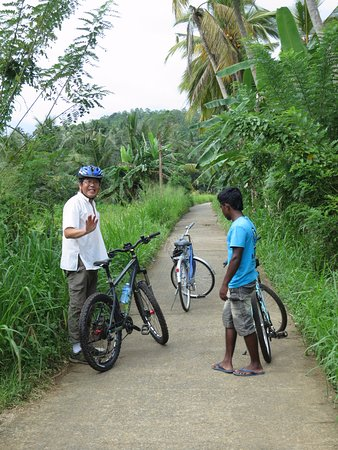 Idle Tours: Lush scenery, great bikes with our nice local guide
