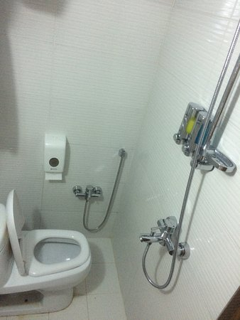 Toilet / Shower combination - sanitary installations badly installed ...