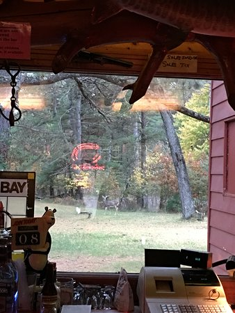 Saint Germain, WI: Look closely and you can see a deer in the yard. This shot was taken from the bar.