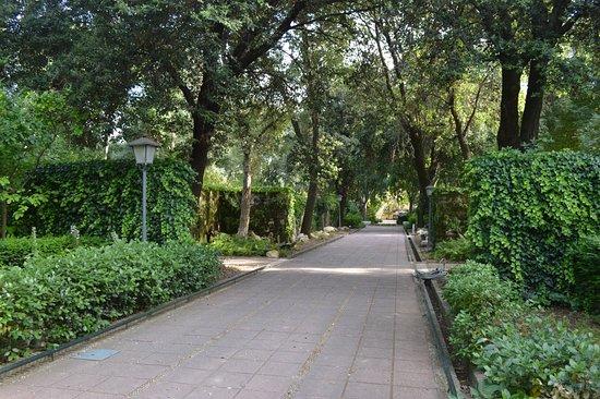 Parra y vista - Изображение Jardin Botanico de Cordoba, Кордова - TripAdvisor