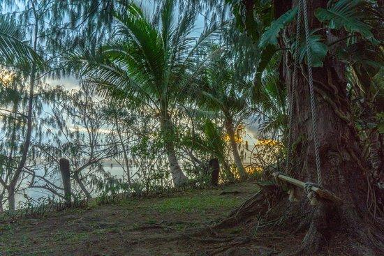 Beach Cocomo: Cocomo Garden