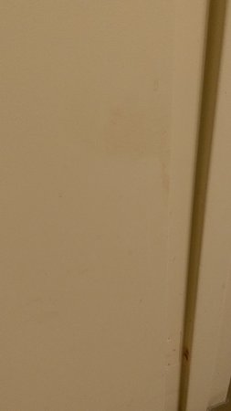 Newport, Tennessee: Bathroom door had stains on both sides at bottom, bathtubs had stained bottom, mold on ceiling o