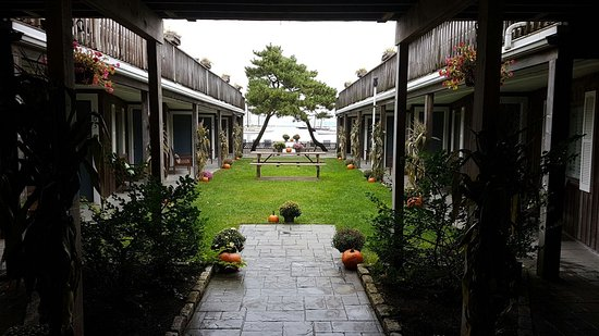 Vineyard Harbor Motel: Our courtyard