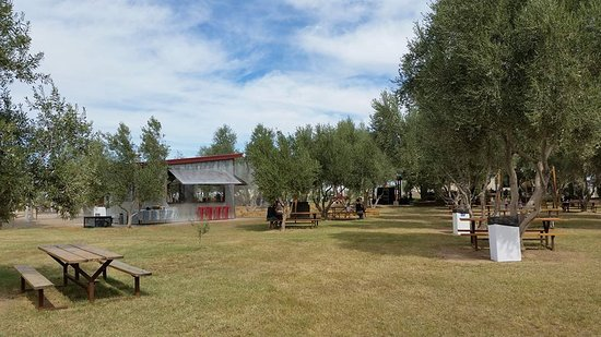 The Grove and the Pit at Queen Creek Olive Mill