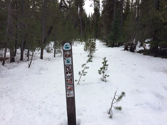 Dufur, OR: snow covered PCT