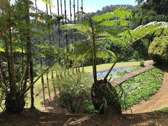 Jardin de Balata: photo0.jpg