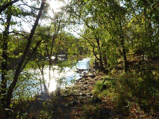 Leesburg, VA: Creek