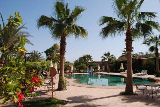 Hotel Dar Zitoune: 7883182_large.jpg