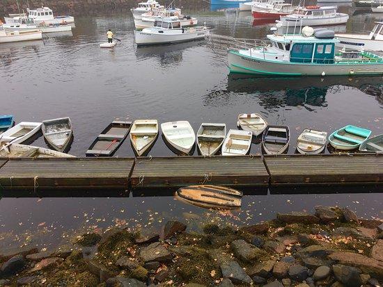 Perkins Cove: photo1.jpg