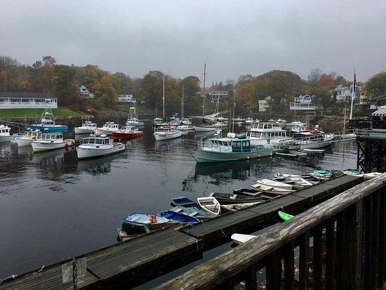 Perkins Cove: photo2.jpg