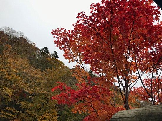 Date, Japón: photo9.jpg