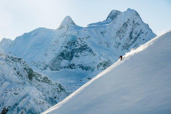 Les Rocheuses canadiennes, Canada : Alpine Vistas at Mica Heli