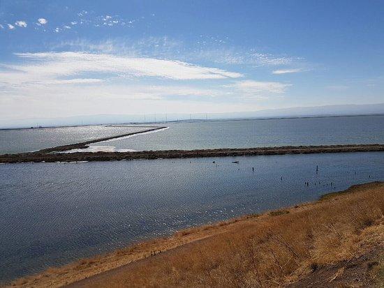 Fremont, Kalifornien: photo2.jpg