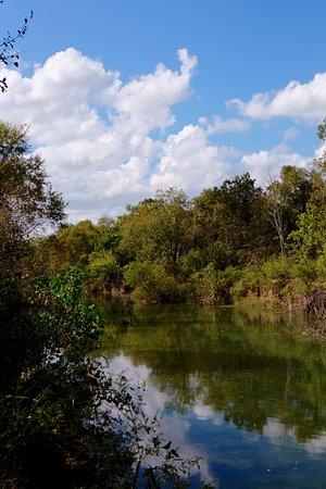 Schertz, TX: great fishing hole