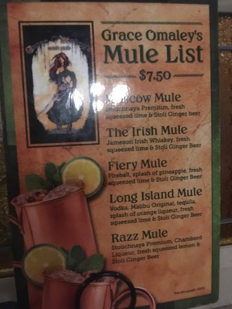 Grace O'Malley's Irish Pub: Mules menu- just one of the zillion drink options