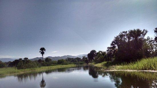 Laguna de Manialtepec: IMG-20160622-WA0002_large.jpg