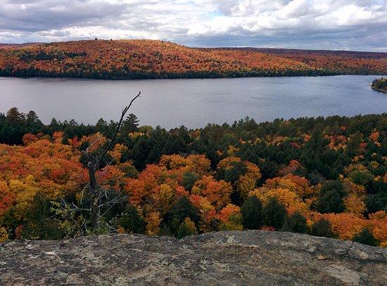 Algonquin Provincial Park, Canadá: Orange fall colours :)