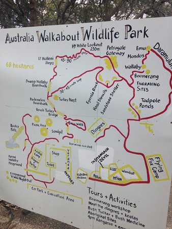 australia walkabout wildlife park map of the park